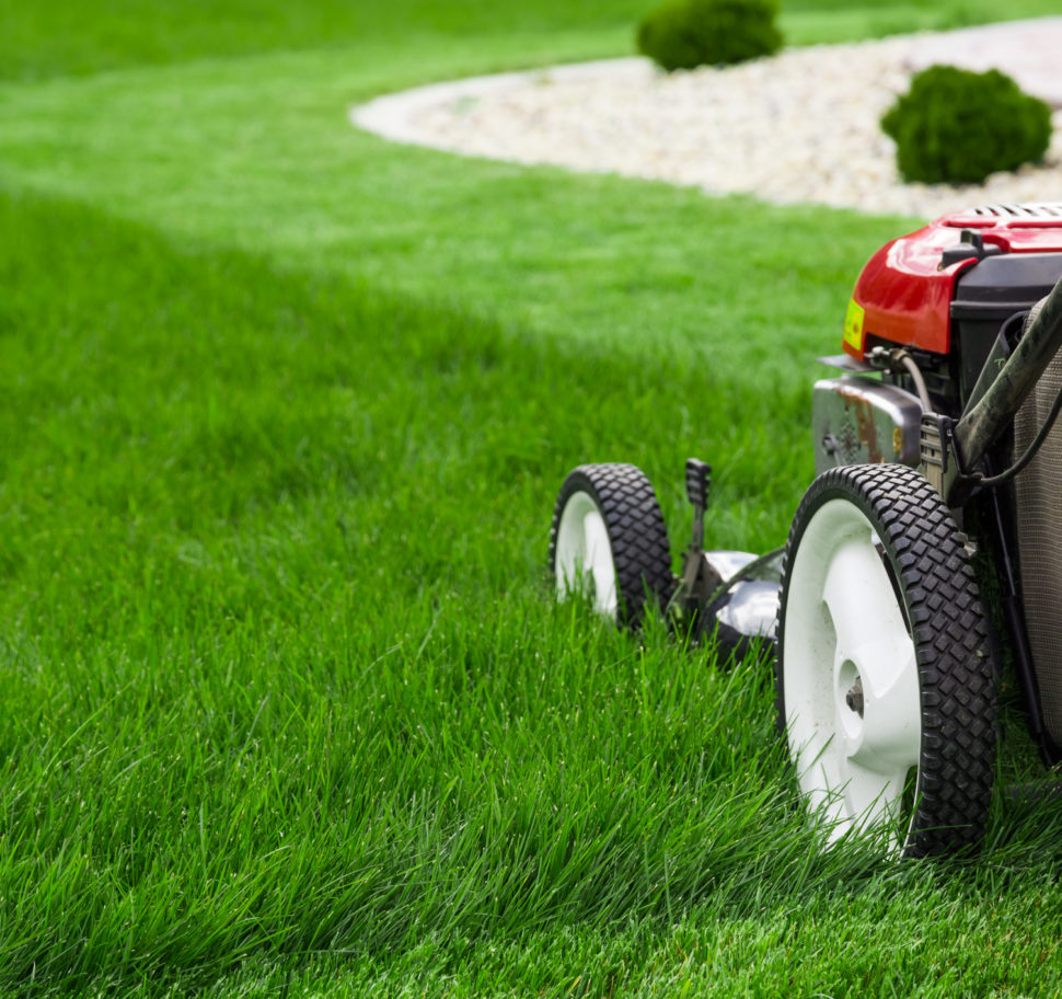 What is an Lawnmower Parent?