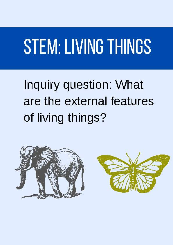 External Features (STEM)'s featured image