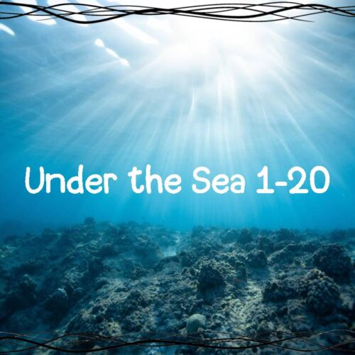 Numbers 1-20 Under The Sea Review