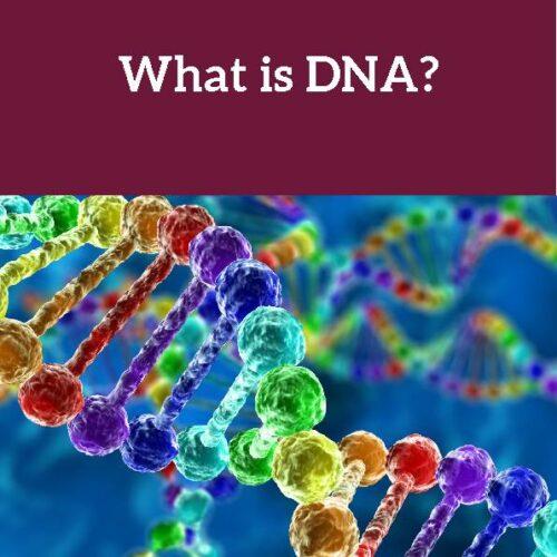 DNA, Reading Passage