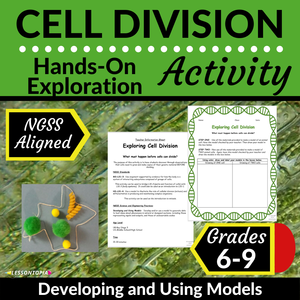 Cell Division | Hands-On Activity