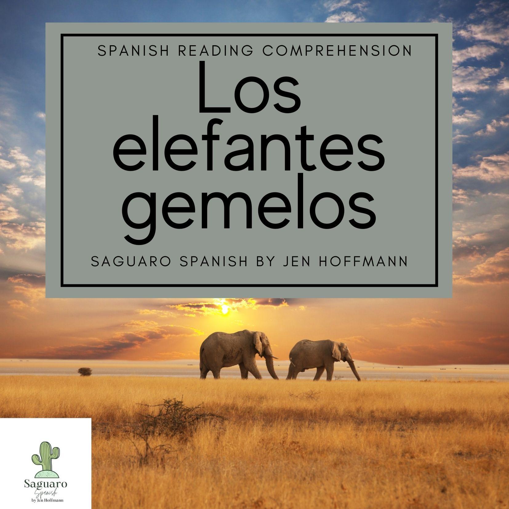 Spanish (CI) Reading Comprehension Story and Worksheet : Los elefantes gemelos