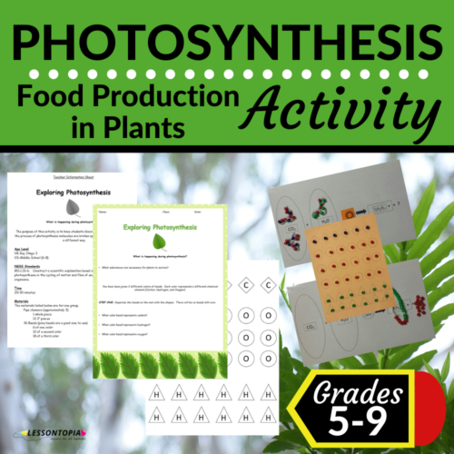 Photosynthesis Modeling Activity