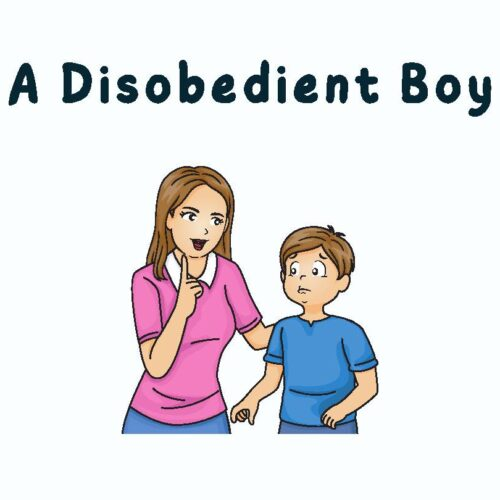 A Disobedient Boy (Short Story)