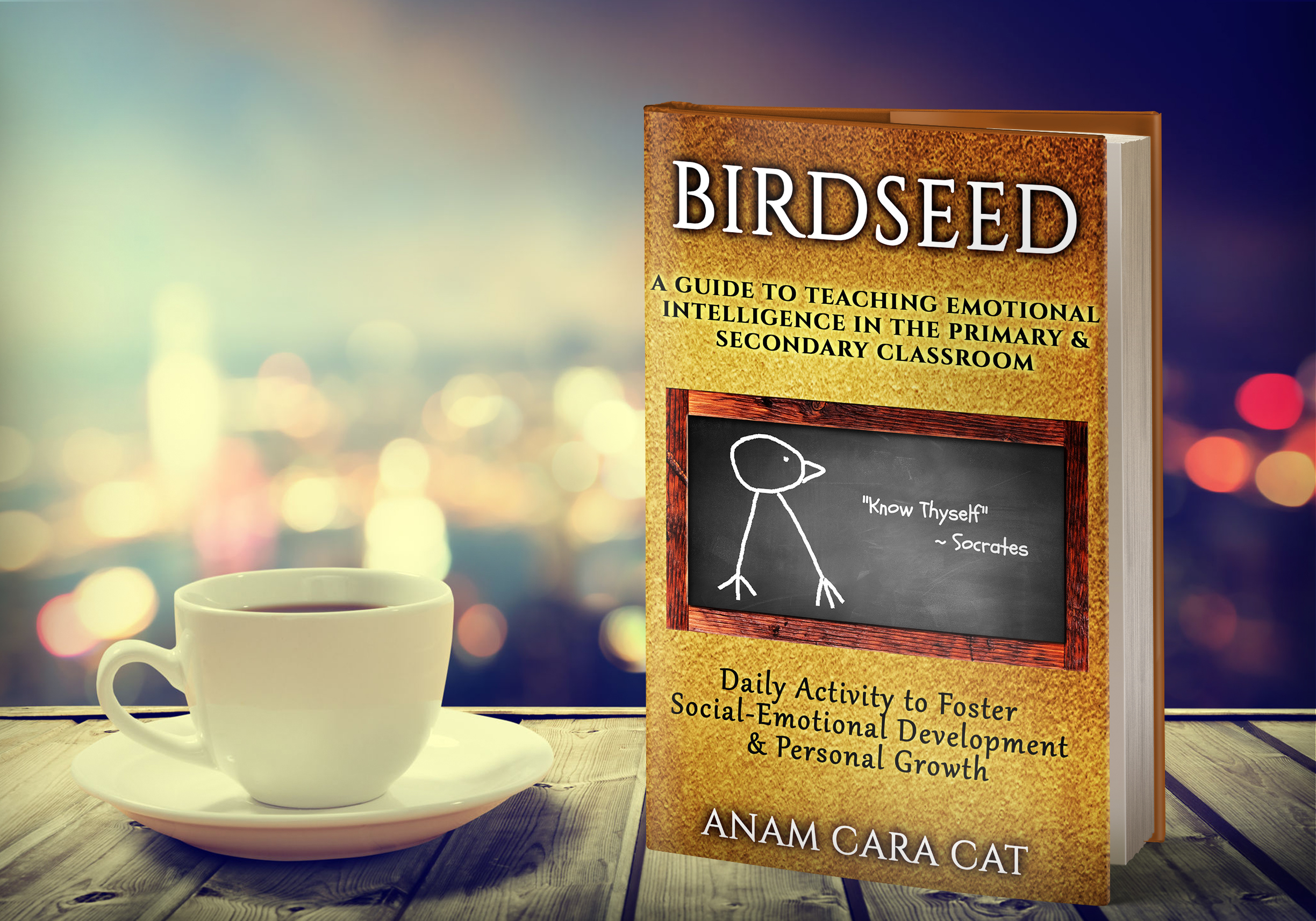 Birdseed: A Guide to Teaching Emotional Intelligence in the Classroom   Daily Writing Warm-Ups Bell-ringers