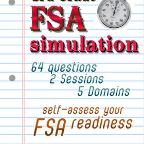 FSA Simulation for 3rd Grade Math: 64 qsts; NO PREP TEST PREP! Print and go! Includes answer key.