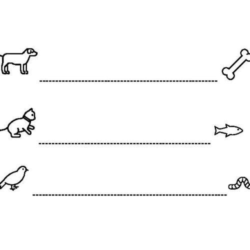 OT Pre-writing strokes animal horizontal lines